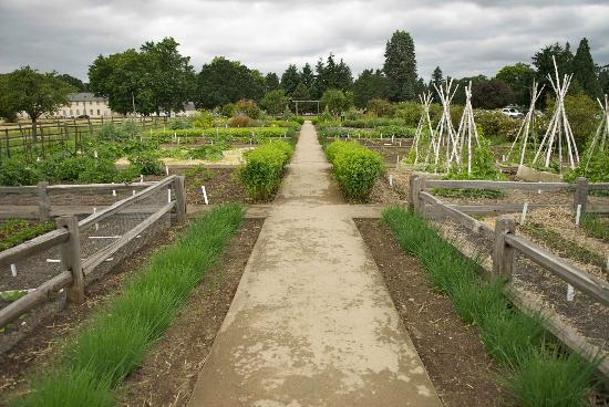 Vancouver, WA: Working Garden