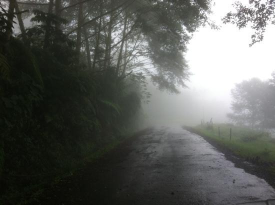 Volcan Turrialba Lodge: camino al volcán...