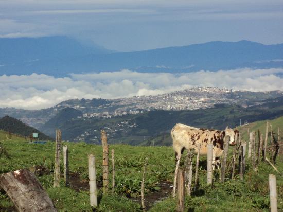 Nevado del Ruiz: vista de maniziales