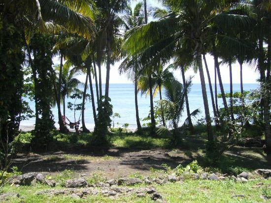 Habitation Anse-Couleuvre: plage vue de la chambre