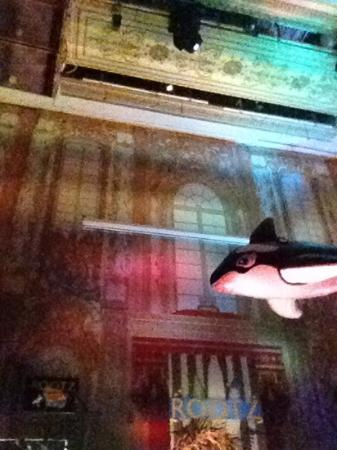 Rootz Club: blow up whale above the DJ, for beach party theme :)