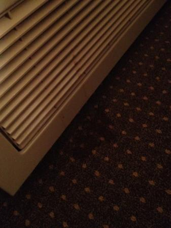 Plaza Hotel: stain under the AC in my room
