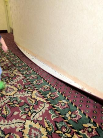 Plaza Hotel: more peeling carpet in the hallway on the 6th floor