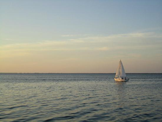 Watching sailboats on the water