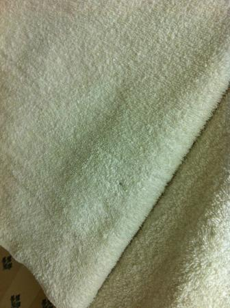 Ramada London: Every towel had ink marks and brown/ellow spots - one had a pubic hair