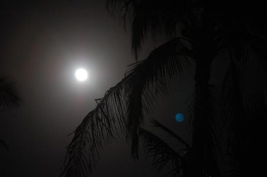 Poipu Shores Resort: Moon outside unit 103A