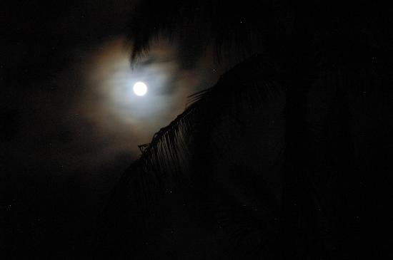 Poipu Shores Resort: Moon outside #103A -- no light pollution here