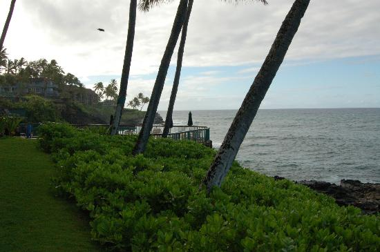 Poipu Shores Resort: View to the pool