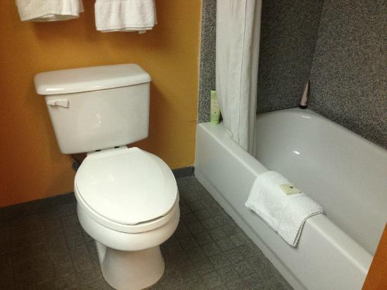 BEST WESTERN PLUS Bass Hotel & Suites: Bath and toilet