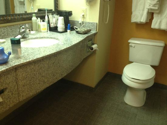 BEST WESTERN PLUS Bass Hotel & Suites: Sink