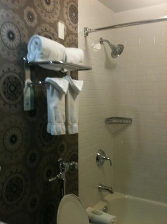 ฮอลิเดย์ อินน์ เอ็กซ์เพรส โฮเต็ล แคส: shower