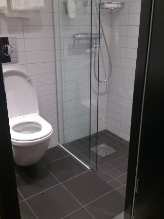 سكانديك جارفا كورج: bathroom 