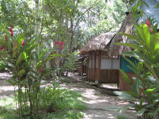 El Panchan: my cobana-home sweet home :)