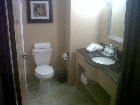 Holiday Inn Express Cortland: As Clean as New Bathroom