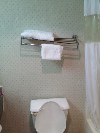 Howard Johnson Express Inn - Beckley : Towel rack was very uneven