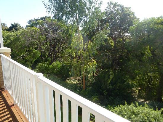 Seashells Yallingup: Treetops from the balcony