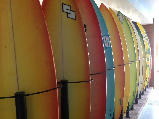 Bliss Surfer Hotel: some decorative surf boards