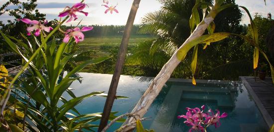 Maya Villa Siargao: sunset by the pool at maya siargao villa