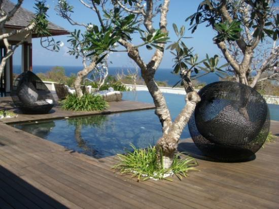 The Shanti Residence : Pool and ocean view