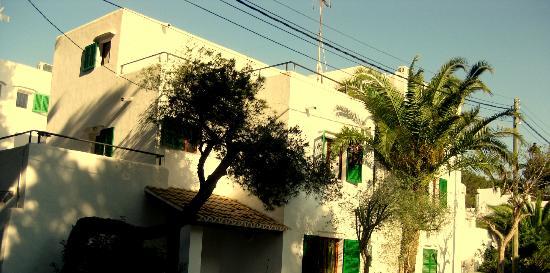 Casa Ceiba Maria: Terrasse