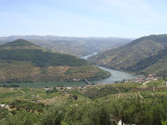 Pousada Barao de Forrester: Vista Rio Douro