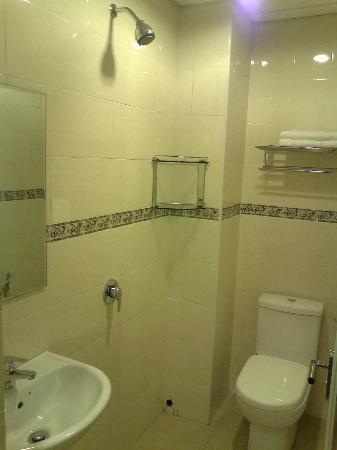Hotel Desaria : Bathroom
