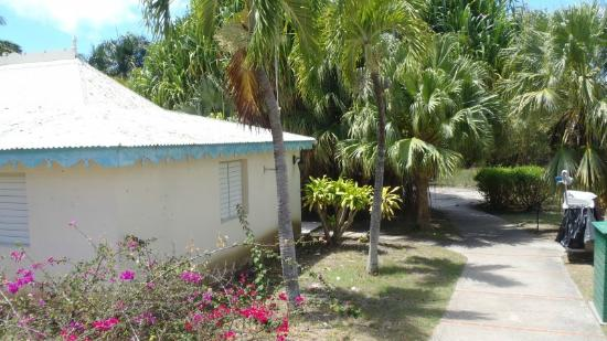 Hotel Residence Golf Village : Les bungalows