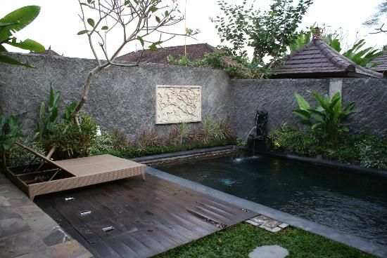 The Kampung Ubud Villa: Piscina