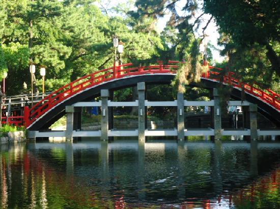 Viator Tour Guides Osaka