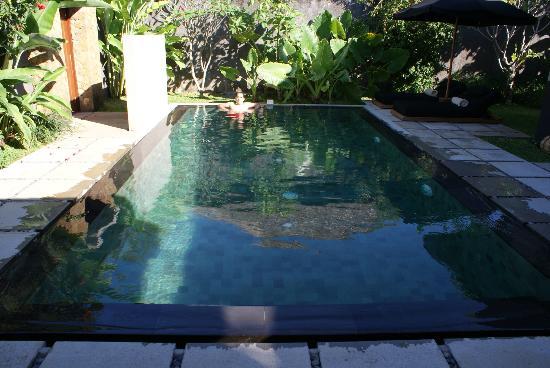 The One Villa: Piscina perfecta