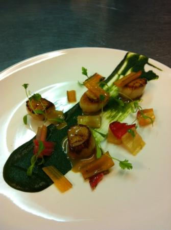 The Martin's Arms: rainbow chard, scallop