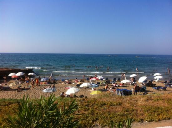 Stalis Beach: stalis