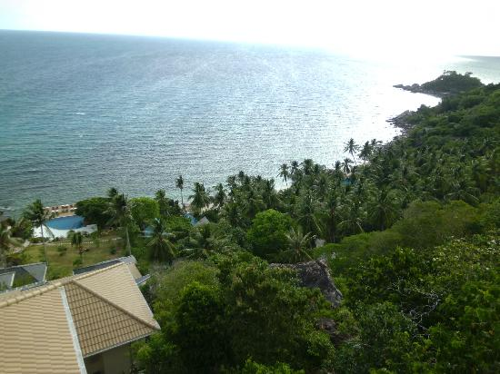 Pinnacle Koh Tao Resort: view