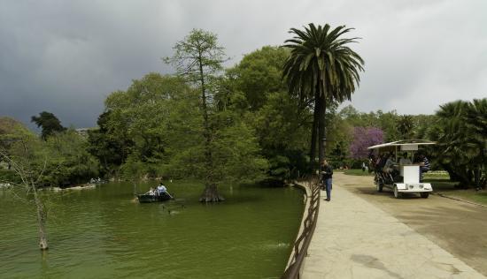 Bicibar: Beautiful scenery, here passing by the lake - Paisaje fenomenal, aquí el lago