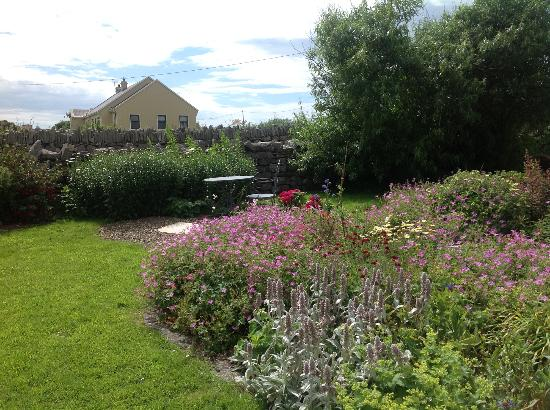 Daly's House: Our Gardens