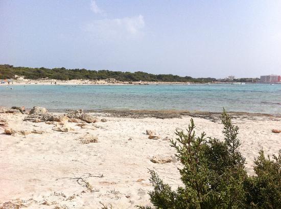 Playa Es Trenc 1