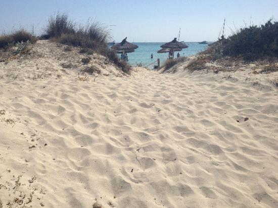 Playa Es Trenc 2