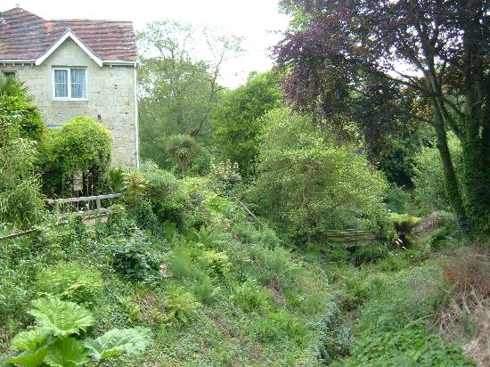Upper Chine Holiday Cottages & Apartments: Hideaway Cottage Shanklin, viewed from the garden
