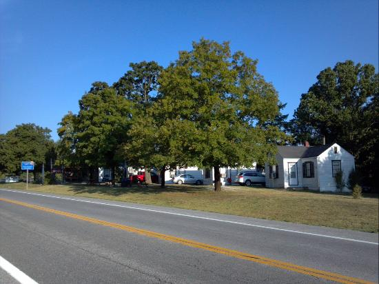 Weaubleau Motel: Motel Grounds and barbecue/picnic area
