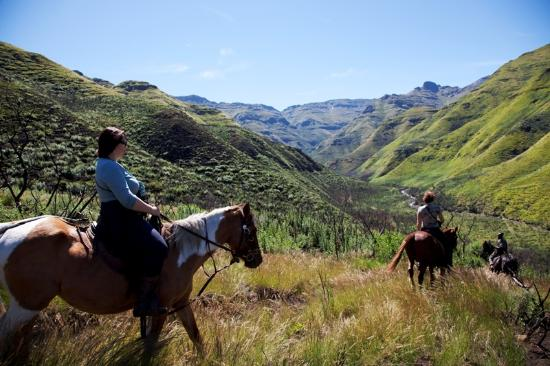 Maliba Mountain Lodge: Pony trekking