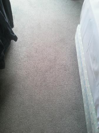 NH Deggendorf: Teppich