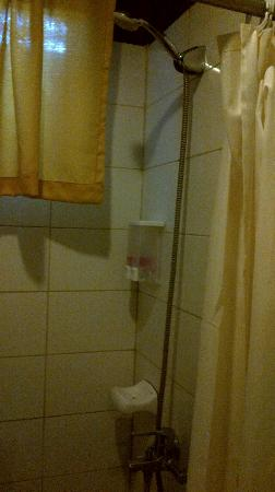 Home Crest Hotel: Shower