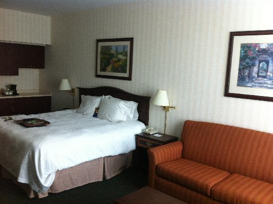 Hampton Inn by Hilton Ottawa : King Study