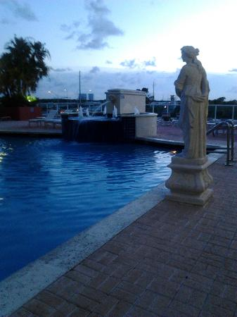 Intracoastal Yacht Club: An Evening at the Intracoastal Yacht Pool