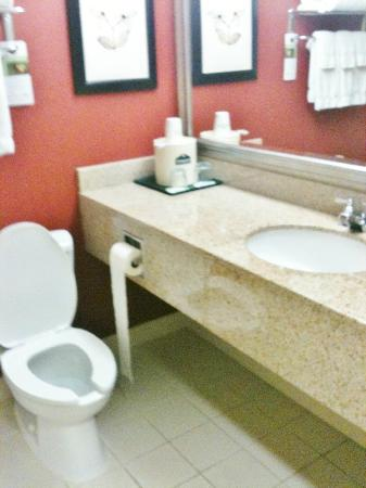 Wingate by Wyndham Chantilly / Dulles Airport: Bathroom