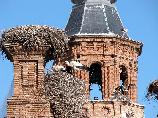 Apartamento Bardenas: A 5 km. de Alfaro la población con más cigüeñas de España
