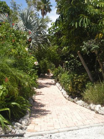 Sunrise Garden Resort: Walkway