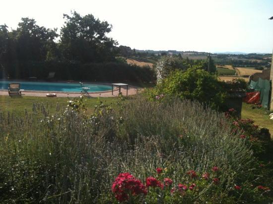 Fattoria dei Comignoli: la piscina