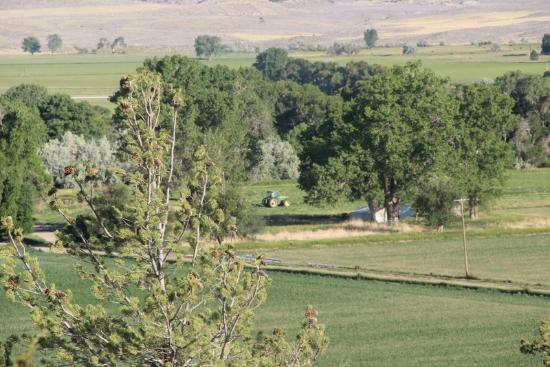 Lonesome Spur Ranch : Veiw from my room ...
