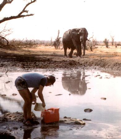 Chobe National Park, Botswana: Waterhole 1986